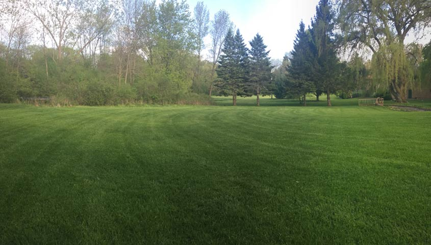 milwaukee lawn care company